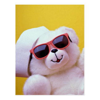 Cool teddy bear with sunglass postcard