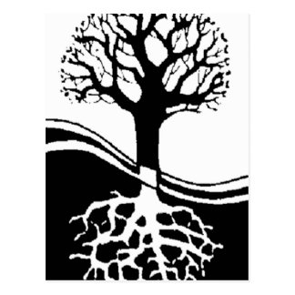 cool tree in black and white postcard