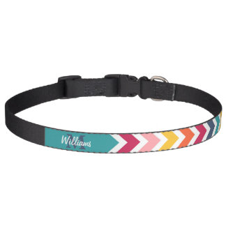 Cool trendy colourful custom Monogram chevron Pet Collar