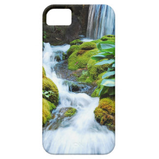 Cool waterfall in green garden iPhone 5 cover