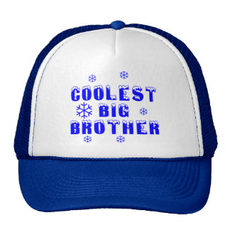 Coolest Big Brother Mesh Hats