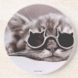 Coolest Cat alive: Coaster