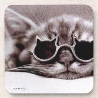 Coolest Cat alive Drink Coaster