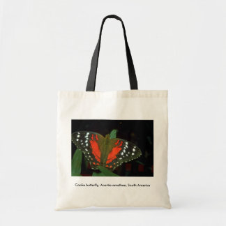 Coolie butterfly Anartia amathea South America Tote Bag