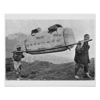 Coolies carrying cotton, 1901 (b/w photo) poster