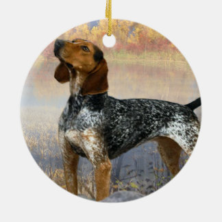 Coon Dog Ornament