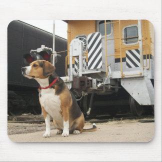 Cooper Beagle Waiting At Train Depot - Mousepad