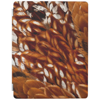 Cooper Pheasant Feather Pattern iPad Cover