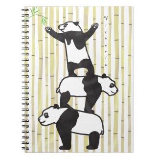 Cooperating pandas notebook