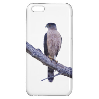 Cooper's Hawk Case For iPhone 5C