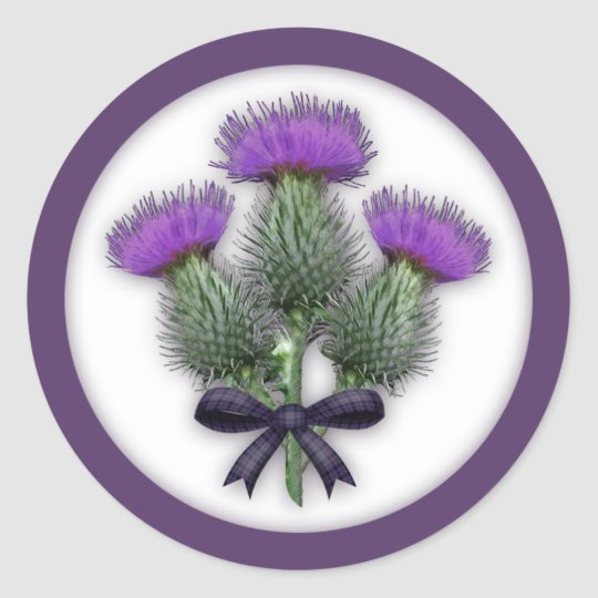 Coordinating Scottish Thistles with Tartan Bow Classic Round