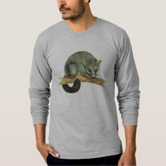 cooroy possum T-Shirt