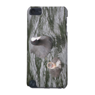Coot and Chick  iPod Touch 5G Covers