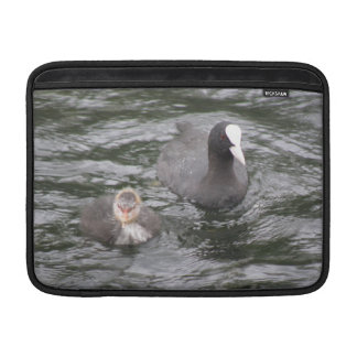 Coot and Chick MacBook Air Sleeve
