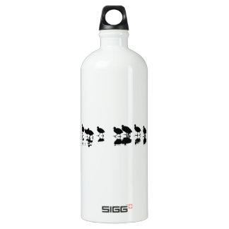 Coot Design - Black on White Water Bottle