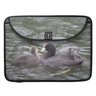Coot Feeding Hungry Chick MacBook Pro Sleeve