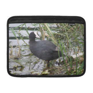 Coot on the Riverbank MacBook Air Sleeve