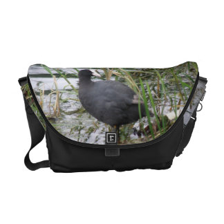 Coot on the Riverbank Messenger Bag