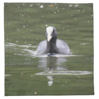 Coot Swimming Napkin