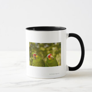 Copan, Honduras Mug