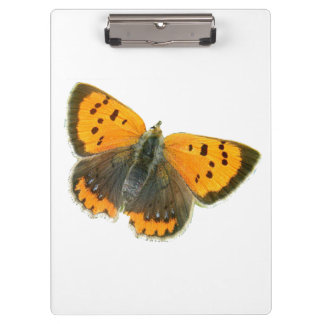 Copper butterfly design clipboards