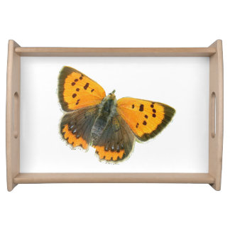 Copper butterfly design food trays