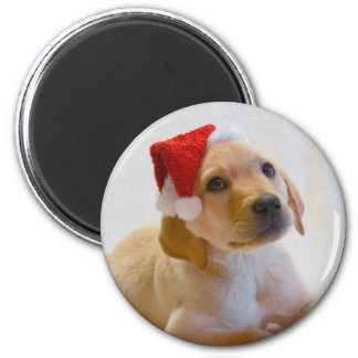 """Copper"" says Merry Christmas! Refrigerator Magnet"
