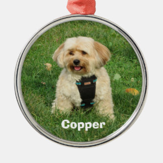 Copper, the Havapookie Christmas Ornament