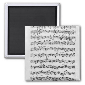 Copy of 'Partita in D Minor for Violin' Magnet