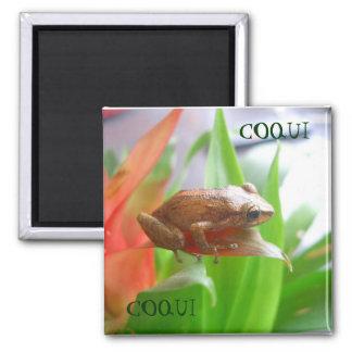 COQUI REFRIGERATOR MAGNETS