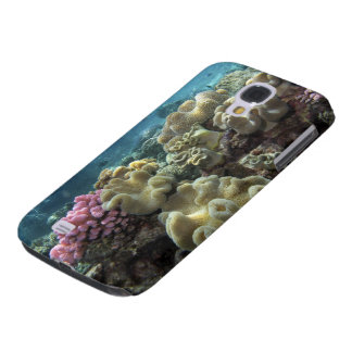 Coral, Agincourt Reef, Great Barrier Reef, Galaxy S4 Case