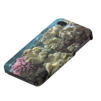 Coral, Agincourt Reef, Great Barrier Reef, iPhone 4/4S Cover
