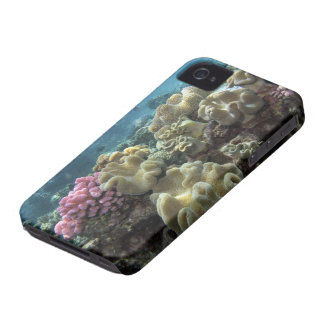 Coral, Agincourt Reef, Great Barrier Reef, iPhone 4 Cover