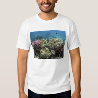 Coral, Agincourt Reef, Great Barrier Reef, T Shirts