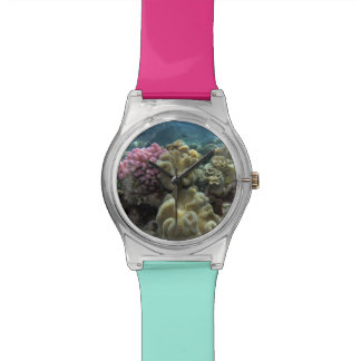 Coral, Agincourt Reef, Great Barrier Reef, Wristwatches