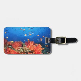 Coral and fish bag tag