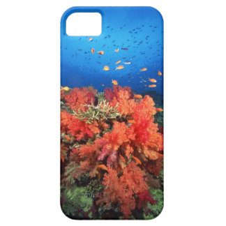 Coral and fish barely there iPhone 5 case