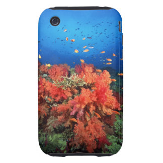 Coral and fish tough iPhone 3 case