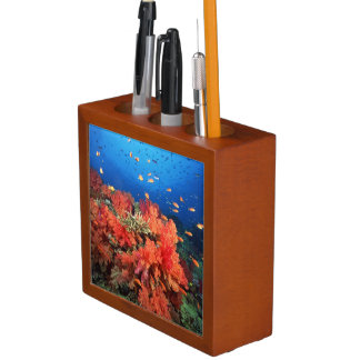 Coral and fish desk organiser