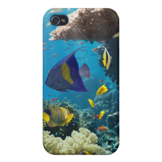 Coral and fish in the Red Sea, Egypt Case For iPhone 4