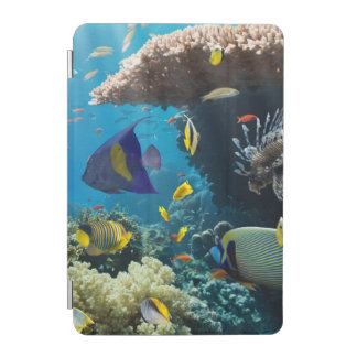 Coral and fish in the Red Sea, Egypt iPad Mini Cover