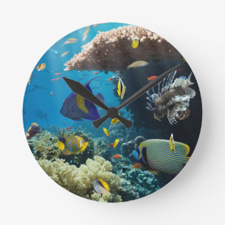 Coral and fish in the Red Sea, Egypt Wall Clocks