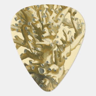 Coral by the Sea Guitar Pick
