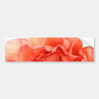 Coral Carnation Flower Bloom Bumper Stickers