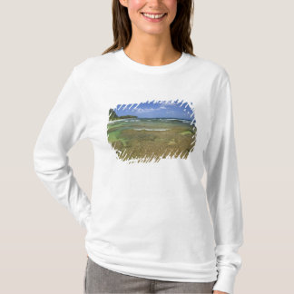 Coral formations on Tunnels Beach T-Shirt