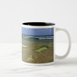 Coral formations on Tunnels Beach Two-Tone Coffee Mug