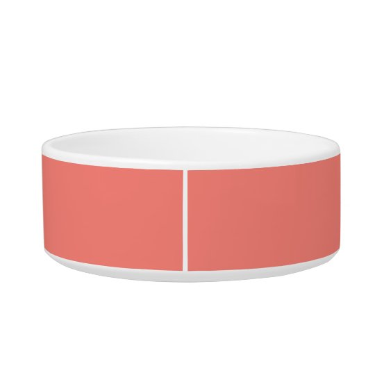 Coral Pink Modern Colour Coordinated Bowl
