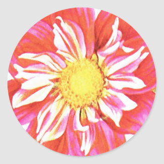 Coral red and white striped dahlia print round sticker