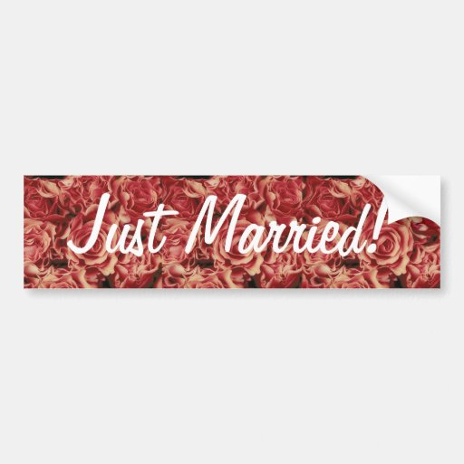 Coral Reds Roses Bouquet, floral, template Bumper Stickers