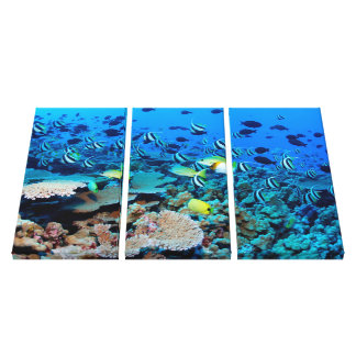 Coral Reef Alive Canvas Print